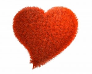 Feather Love Heart