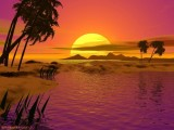 Download Sunset Wallpaper Widescreen