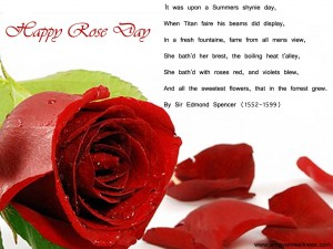 Rose Day 7th February 2013 Wallpaper