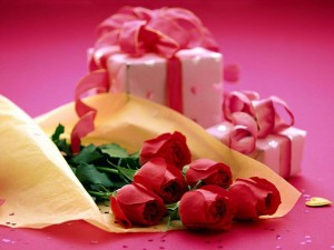 Rose Day HD Wallpaper 2013