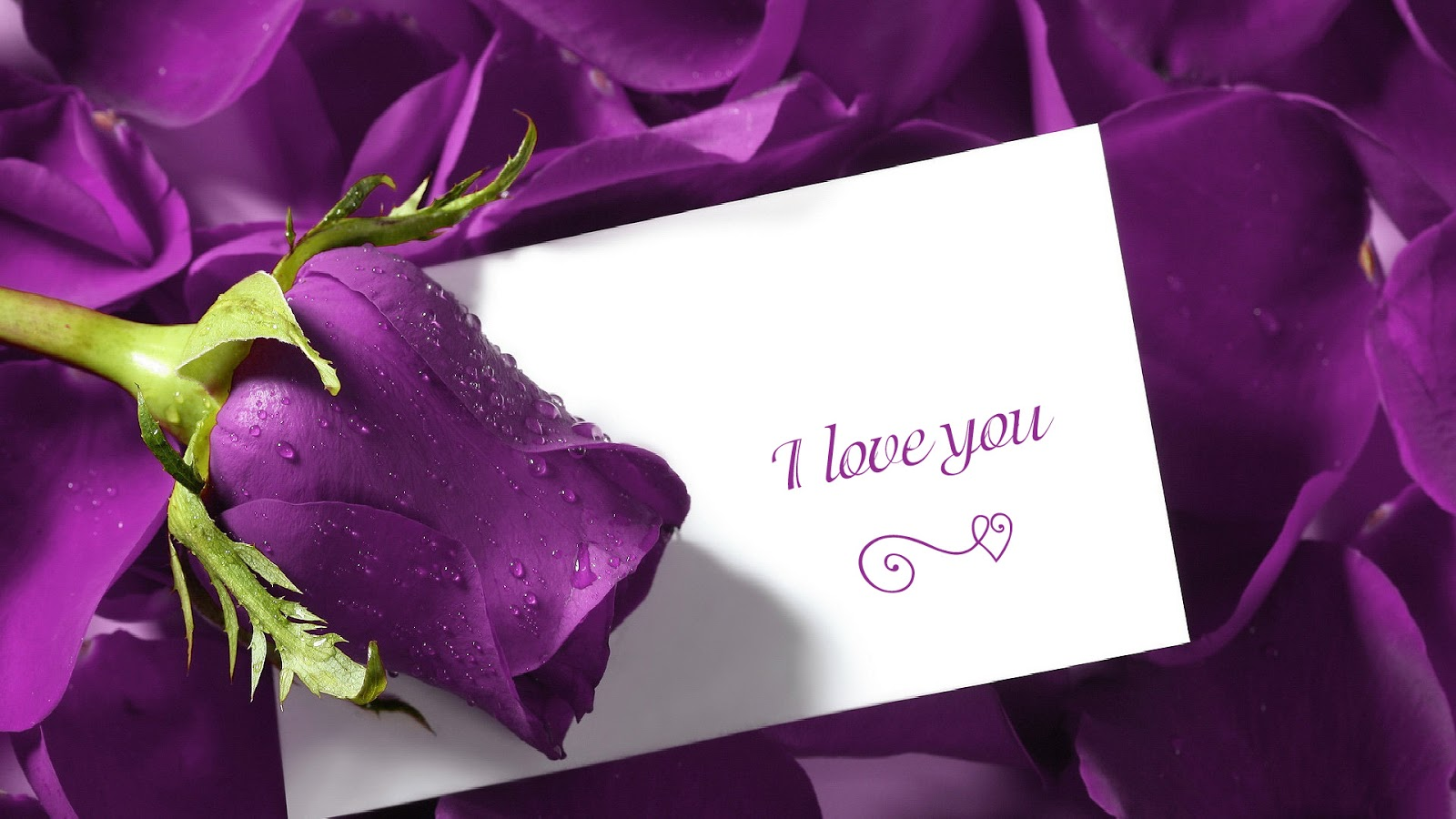 Love Sms Wallpapers Facebook In English Hinid For Mobile Free Download Android Urdu Hd