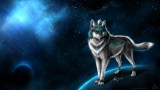 Best Wolf Wallpaper HD