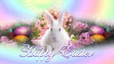 Happy Easter Bunny Wallpaper HD 1920x1080
