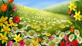 spring hd wallpapers