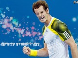Andy Murray Tennis Player Wallpaper 1024x768