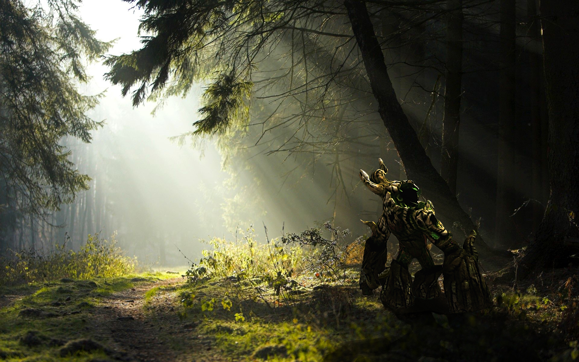1920x1200 wallpaper forest silhouette - photo #41