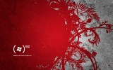Free Blooming RED Wallpaper Widescreen