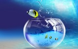 3D Wallpaper Fish Aquarium