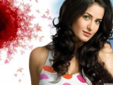 Actress Katrina Kaif 2013 Wallpaper