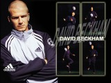 Adidas David Beckham Wallpaper