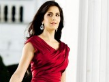 Katrina Kaif 2013 Wallpaper 1024x768