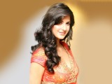Katrina Kaif Bollywood Actress HD Wallpaper