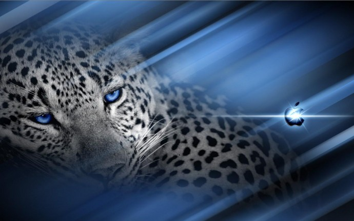 Snow Leopard Wallpaper For Ipad