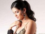 Actress Deeksha Seth Wallpaper
