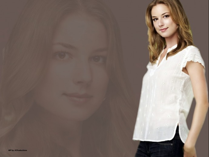 Celebrity Emily VanCamp Wallpaper 2013