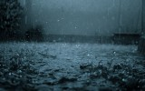 Cool Rain Widescreen Wallpaper