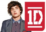 Liam Payne One Direction 2013 Wallpaper