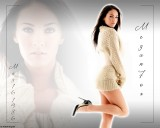 Megan Fox Wallpaper For Windows 7
