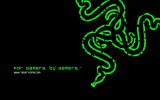 Razer Green Logo Hd Wallpaper 1920x1200
