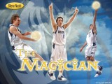 Steve Nash Dallas Mavericks Wallpaper