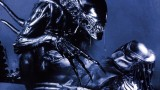Wallpapers Aliens vs Predator