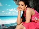 Actrees Amisha Patel Wallpaper