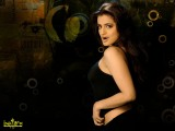 Amisha Patel Top Wallpaper