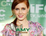 Amy Adams Wallpaper HD 2013