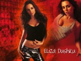 Download Eliza Dushku Wallpaper