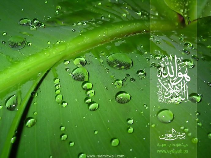 Download Islamic Wallpaper For Desktop