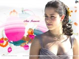 New Ana Ivanovic Wallpaper