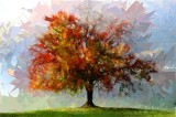 Abstraction Tree Wallpapers