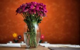 Pink Flowers Vase Wallpapers