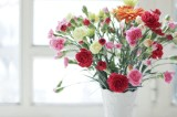 Vase with Flowers Wallpapers