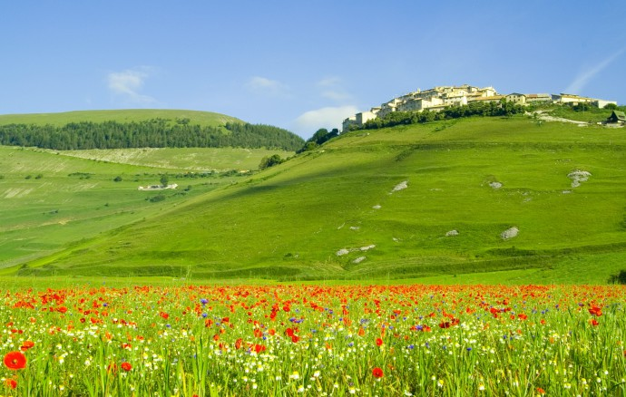 Nice Picture Of Green Hills, Photo Of Poppy Fields, Italy