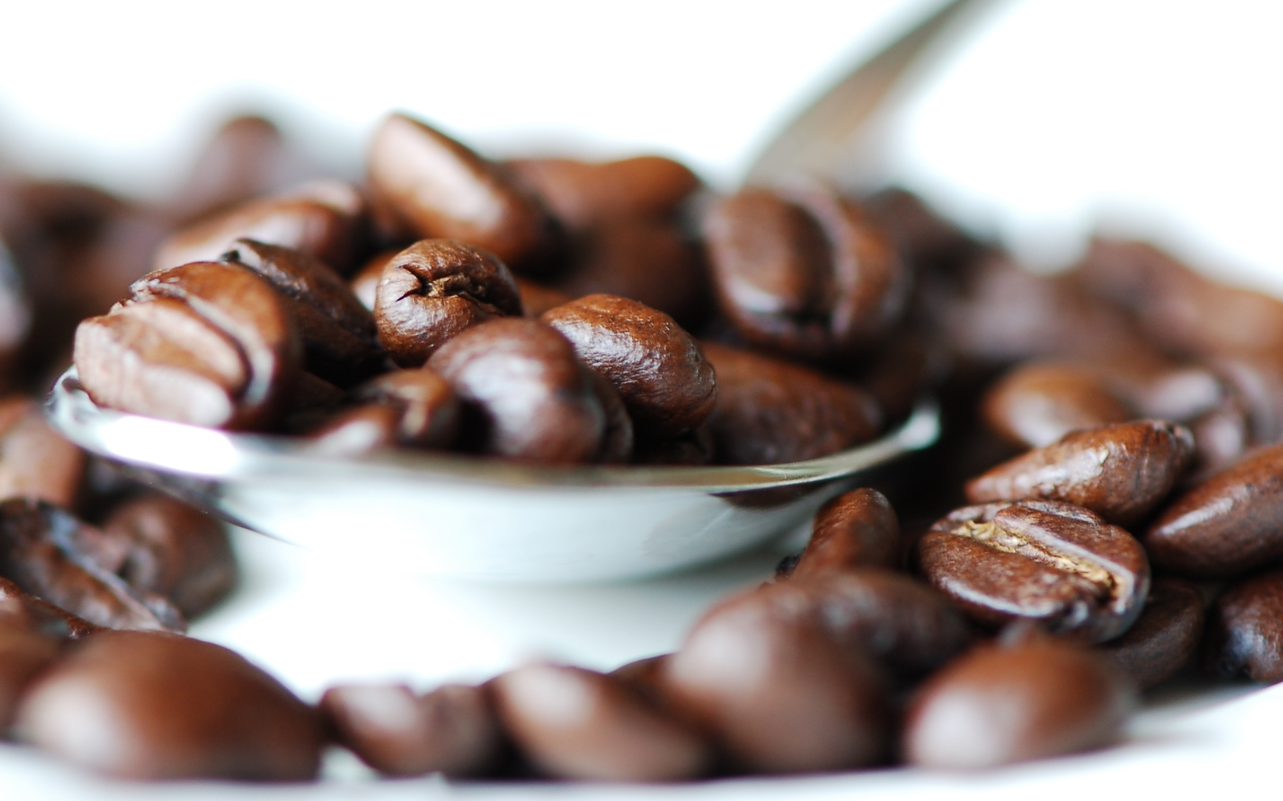 hd picture of macro photo picture of coffee grain. Black Bedroom Furniture Sets. Home Design Ideas