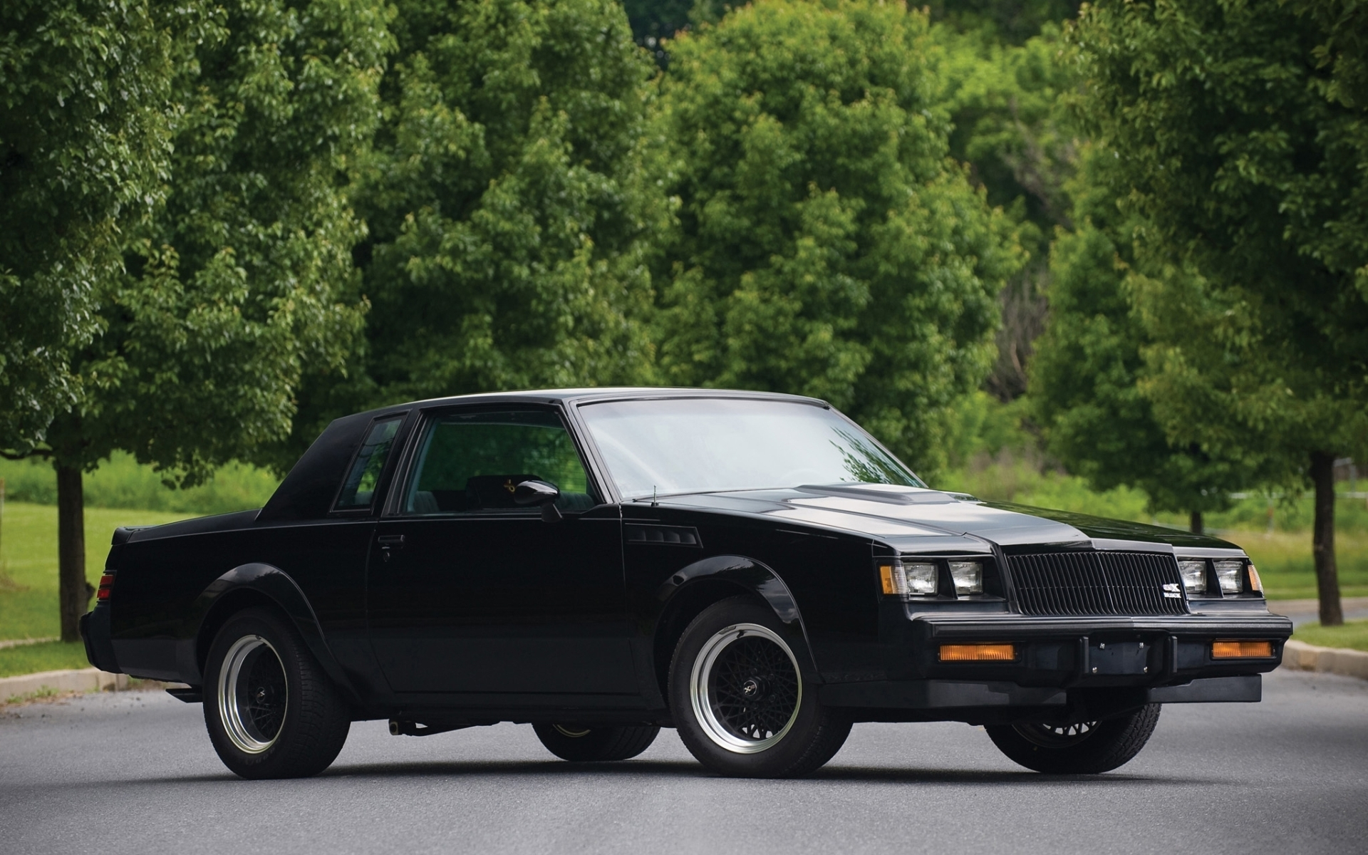 high quality image of buick gnx grand national photo of. Black Bedroom Furniture Sets. Home Design Ideas